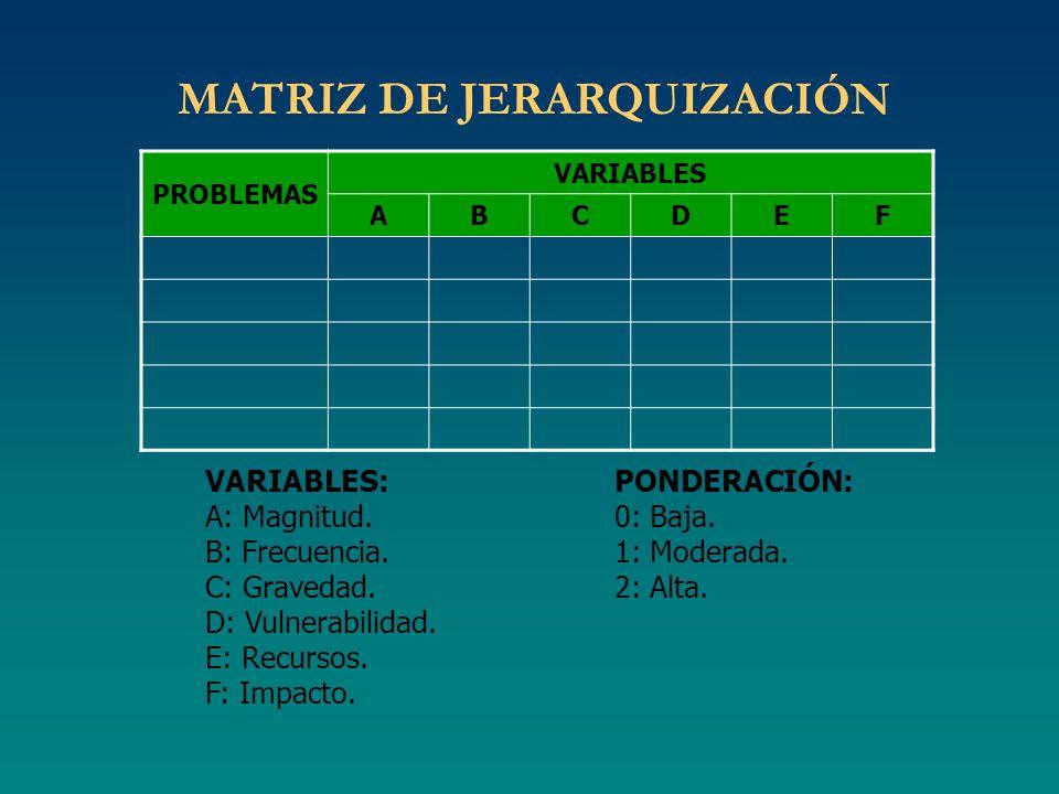 MATRIZ DE JERARQUIZACIÓN PROBLEMAS VARIABLES ABCDEF VARIABLES: A: Magnitud. B: Frecuencia. C: Gravedad. D: Vulnerabilidad. E: Recursos. F: Impacto. PO