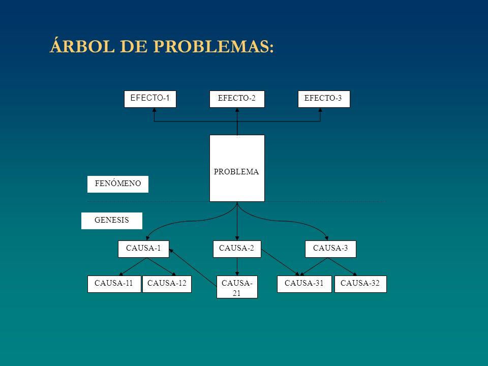 ÁRBOL DE PROBLEMAS: EFECTO-1 PROBLEMA CAUSA-1CAUSA-2CAUSA-3 CAUSA-11CAUSA-12CAUSA- 21 CAUSA-31CAUSA-32 FENÓMENO GENESIS EFECTO-2EFECTO-3