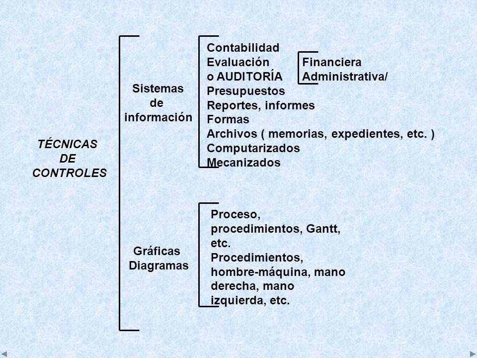 Contabilidad EvaluaciónFinanciera o AUDITORÍAAdministrativa/ Presupuestos Reportes, informes Formas Archivos ( memorias, expedientes, etc. ) Computari