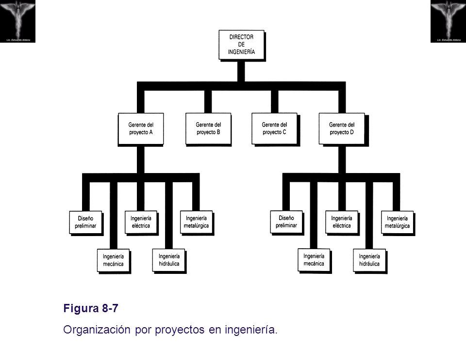Figura 8-7 Organización por proyectos en ingeniería.