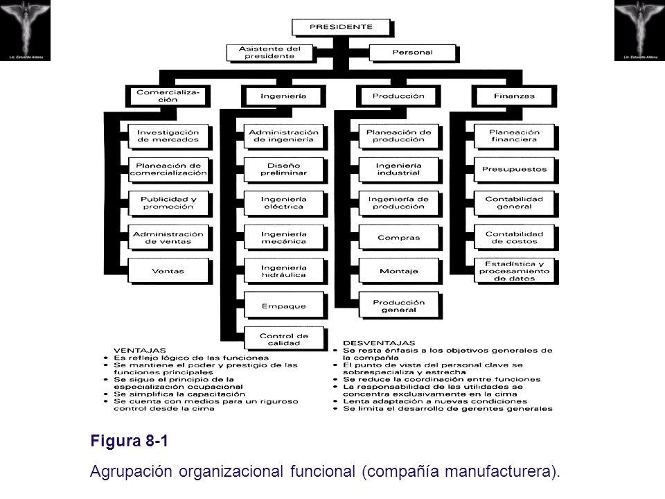 Figura 8-1 Agrupación organizacional funcional (compañía manufacturera).