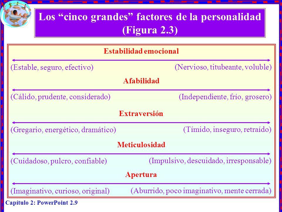 Capítulo 2: PowerPoint 2.9 Los cinco grandes factores de la personalidad (Figura 2.3) Estabilidad emocional Afabilidad Extraversión (Estable, seguro,