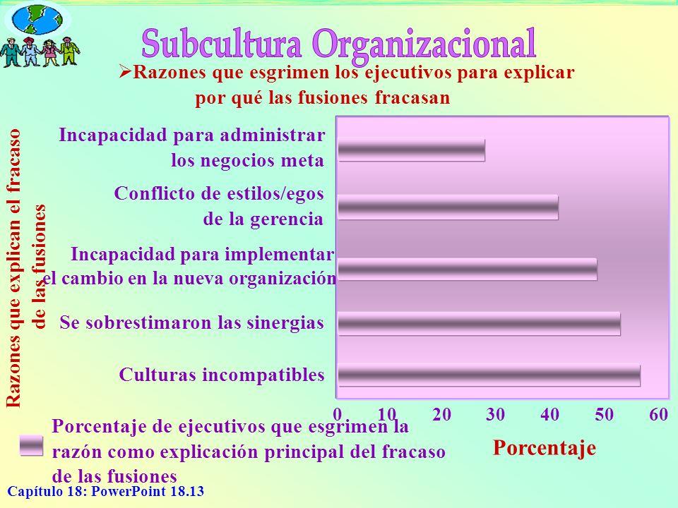 Capítulo 18: PowerPoint 18.13 Incapacidad para administrar los negocios meta Conflicto de estilos/egos de la gerencia Incapacidad para implementar el