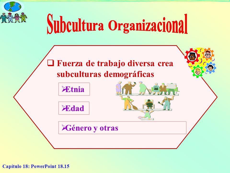Capítulo 18: PowerPoint 18.15 Fuerza de trabajo diversa crea subculturas demográficas Etnia Edad Género y otras