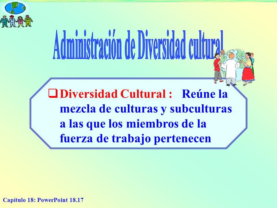 Capítulo 18: PowerPoint 18.17 Diversidad Cultural : Reúne la mezcla de culturas y subculturas a las que los miembros de la fuerza de trabajo pertenece