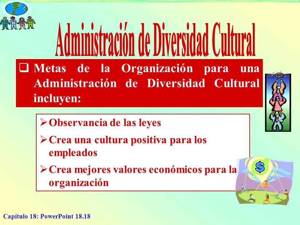 Capítulo 18: PowerPoint 18.18 Metas de la Organización para una Administración de Diversidad Cultural incluyen: O bservancia de las leyes C rea una cu