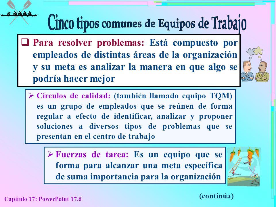 Capítulo 17: PowerPoint 17.6 Para resolver problemas: Está compuesto por empleados de distintas áreas de la organización y su meta es analizar la mane
