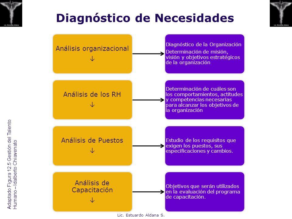 Diagnóstico de Necesidades Análisis organizacional Diagnóstico de la Organización Determinación de misión, visión y objetivos estratégicos de la organ