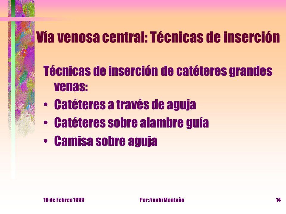 10 de Febreo 1999Por: Anahi Montaño14 Vía venosa central: Técnicas de inserción Técnicas de inserción de catéteres grandes venas: Catéteres a través d