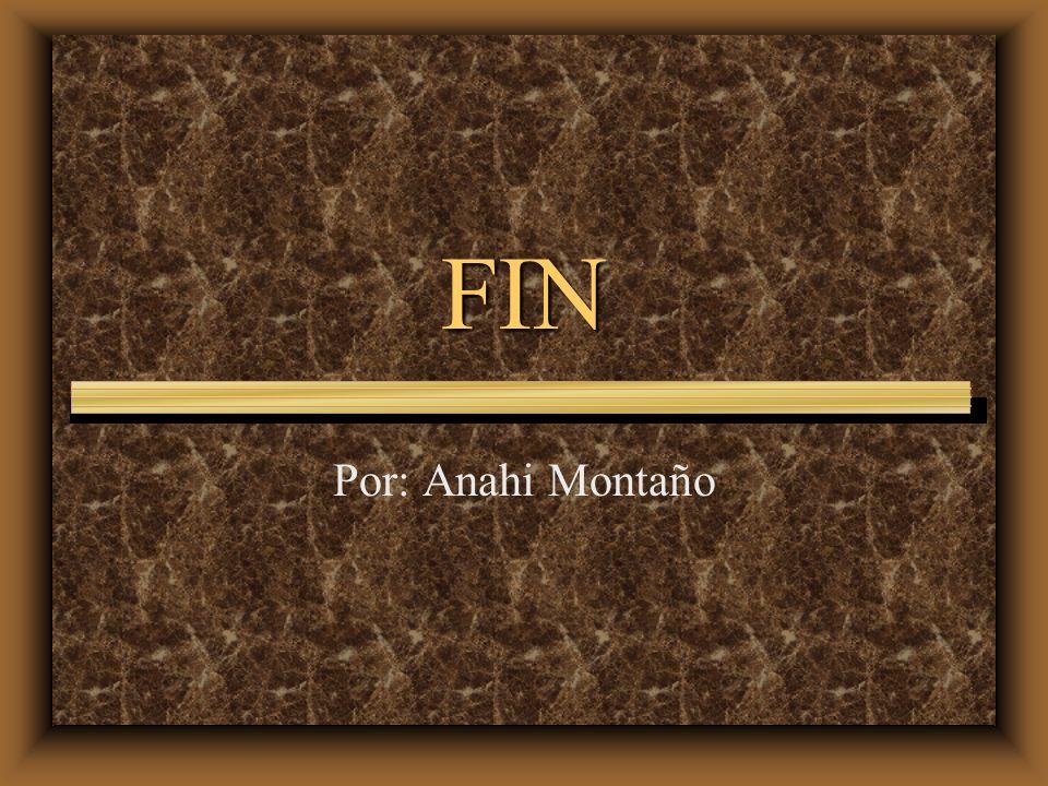 FIN Por: Anahi Montaño