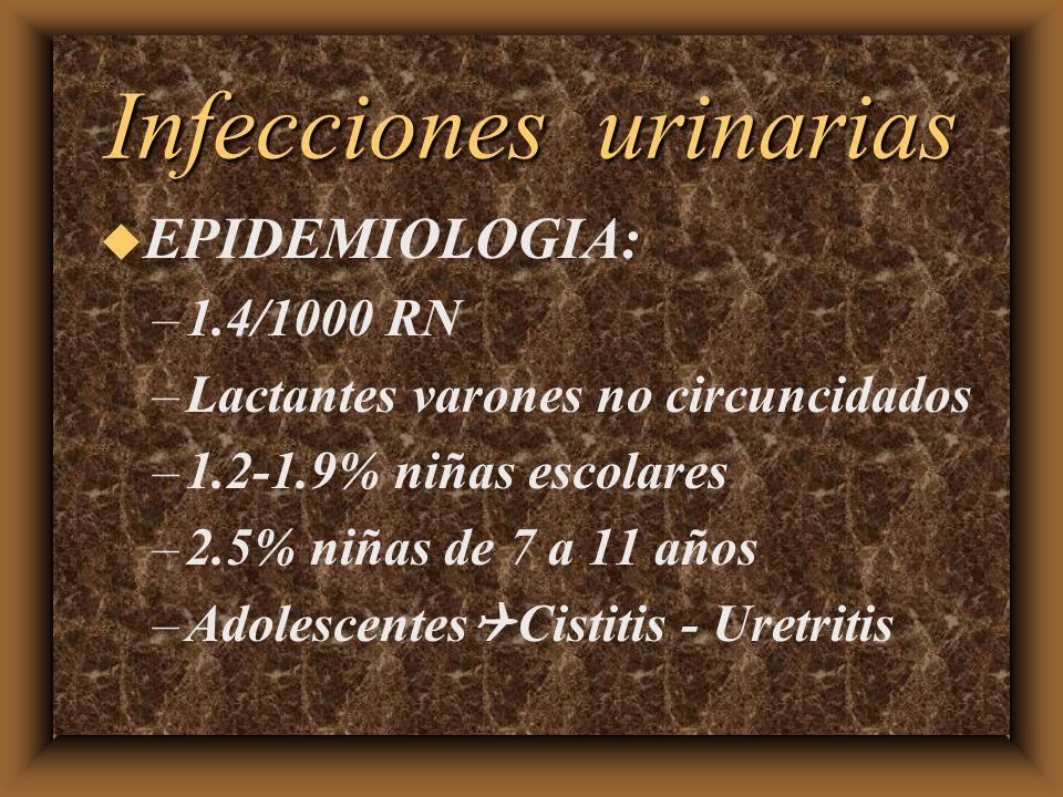 Infecciones urinarias u EPIDEMIOLOGIA: –1.4/1000 RN –Lactantes varones no circuncidados –1.2-1.9% niñas escolares –2.5% niñas de 7 a 11 años –Adolesce