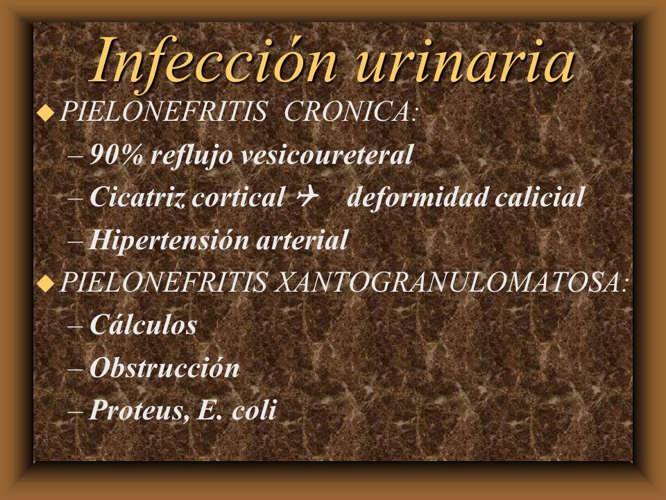 Infección urinaria u PIELONEFRITIS CRONICA: –90% reflujo vesicoureteral –Cicatriz cortical deformidad calicial –Hipertensión arterial u PIELONEFRITIS