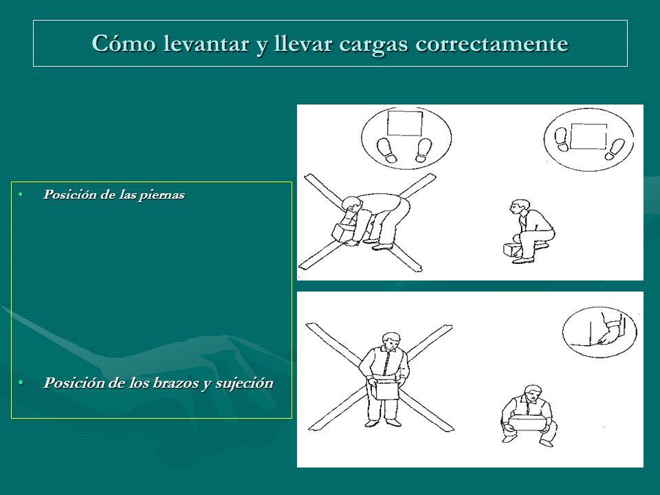 Cómo levantar y llevar cargas correctamente Posición de las piernasPosición de las piernas Posición de los brazos y sujeciónPosición de los brazos y s