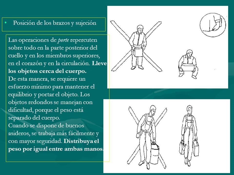 Posición de los brazos y sujeción Las operaciones de porte repercuten sobre todo en la parte posterior del cuello y en los miembros superiores, en el
