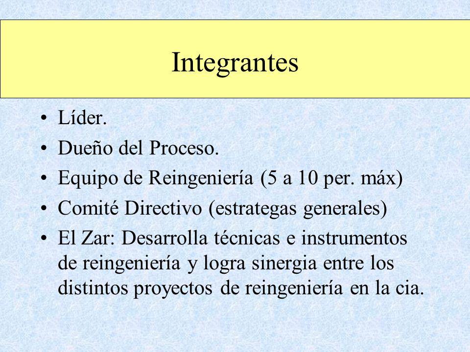 Integrantes Líder. Dueño del Proceso. Equipo de Reingeniería (5 a 10 per. máx) Comité Directivo (estrategas generales) El Zar: Desarrolla técnicas e i