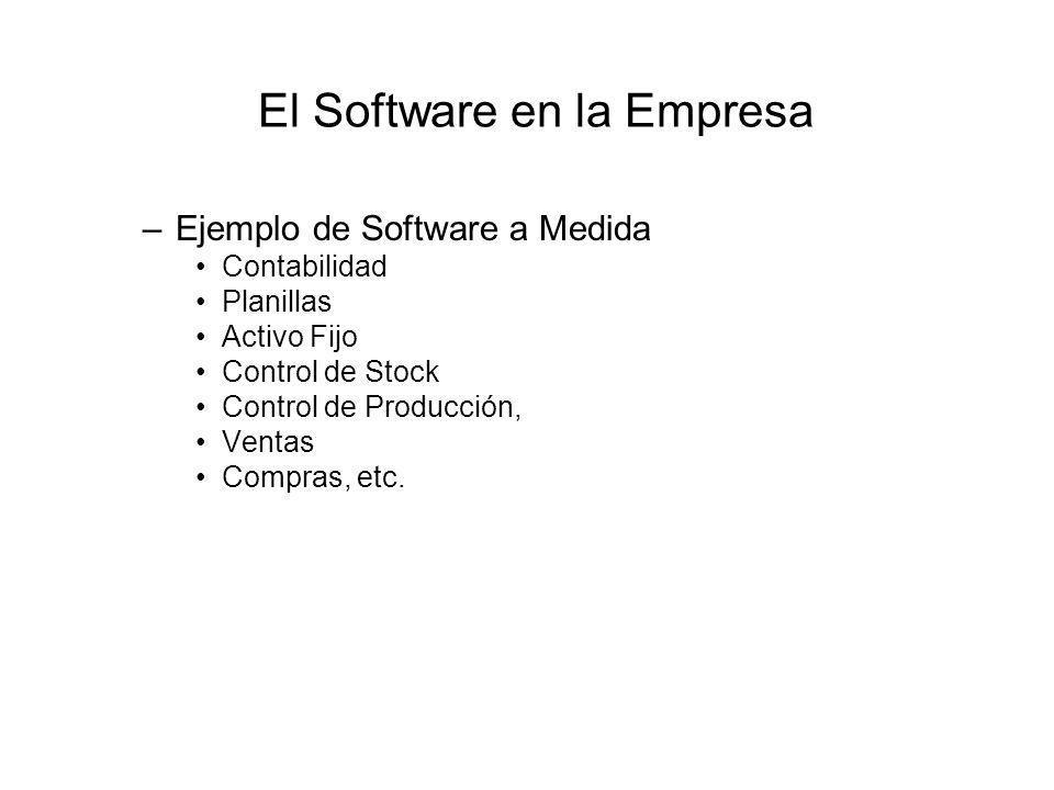 El Software en la Empresa –Ejemplo de Software a Medida Contabilidad Planillas Activo Fijo Control de Stock Control de Producción, Ventas Compras, etc.