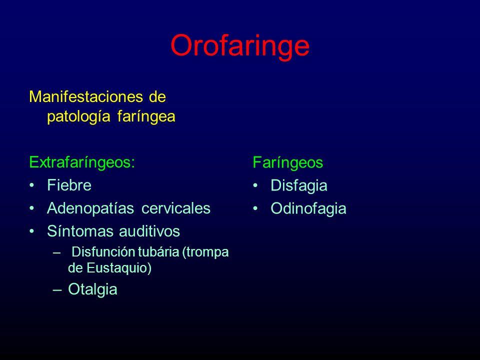 Orofaringe Manifestaciones de patología faríngea Extrafaríngeos: Fiebre Adenopatías cervicales Síntomas auditivos – Disfunción tubária (trompa de Eust