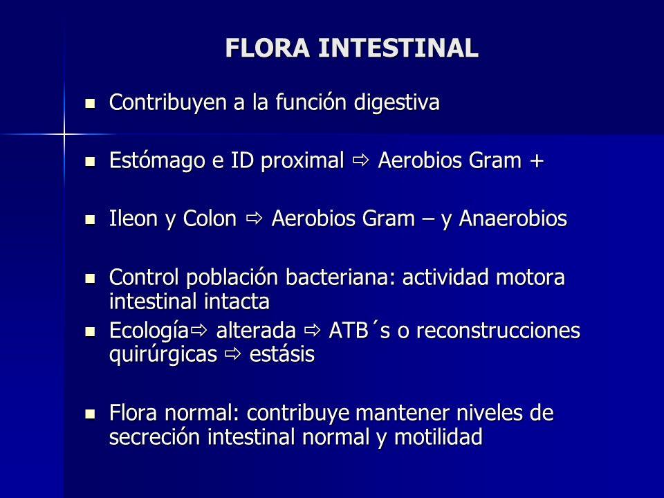 FLORA INTESTINAL Contribuyen a la función digestiva Contribuyen a la función digestiva Estómago e ID proximal Aerobios Gram + Estómago e ID proximal A