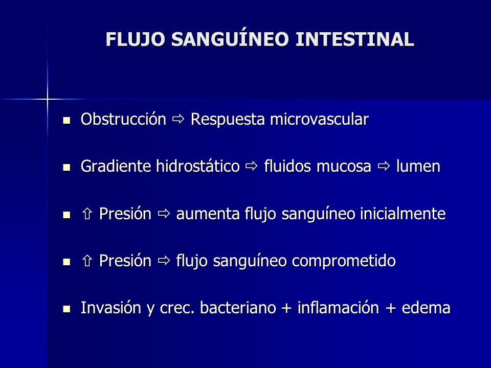 FLUJO SANGUÍNEO INTESTINAL Obstrucción Respuesta microvascular Obstrucción Respuesta microvascular Gradiente hidrostático fluidos mucosa lumen Gradien