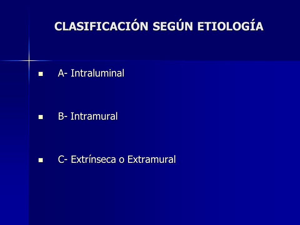 CLASIFICACIÓN SEGÚN ETIOLOGÍA A- Intraluminal A- Intraluminal B- Intramural B- Intramural C- Extrínseca o Extramural C- Extrínseca o Extramural