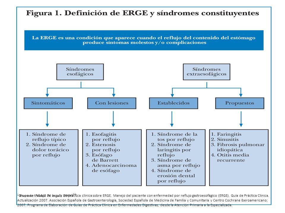 1 Grupo de trabajo de la guía de práctica clínica sobre ERGE. Manejo del paciente con enfermedad por reflujo gastroesofágico (ERGE). Guía de Práctica