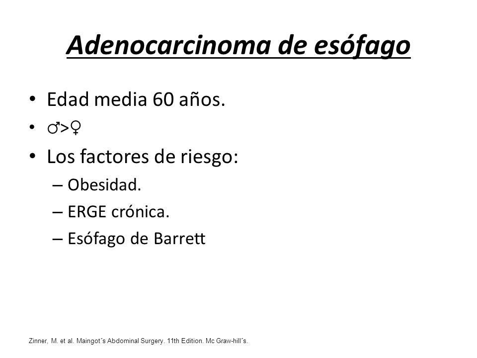 Adenocarcinoma de esófago Edad media 60 años. > Los factores de riesgo: – Obesidad. – ERGE crónica. – Esófago de Barrett Zinner, M. et al. Maingot´s A