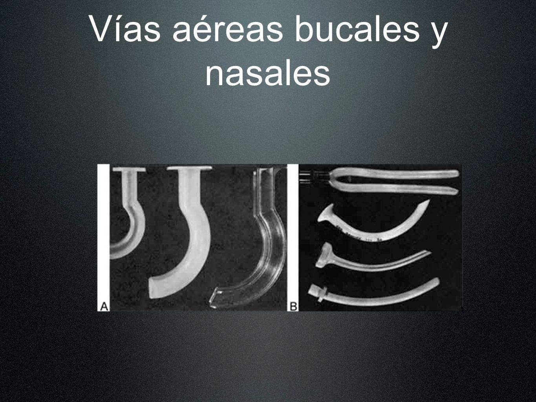 Vías aéreas bucales y nasales