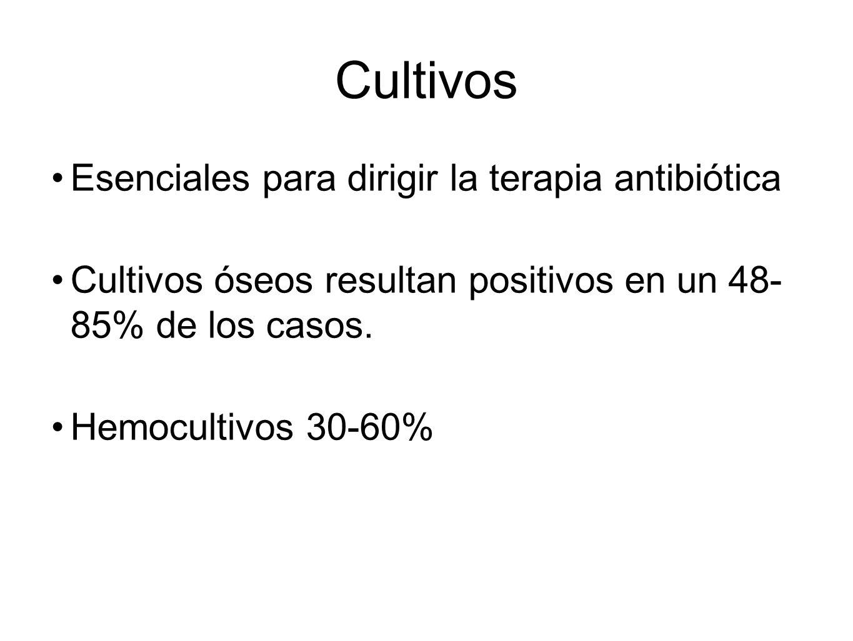 Cultivos Esenciales para dirigir la terapia antibiótica Cultivos óseos resultan positivos en un 48- 85% de los casos. Hemocultivos 30-60%