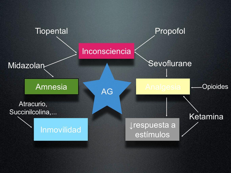 Inconsciencia AG Amnesia Inmovilidad respuesta a estímulos Analgesia Propofol Opioides Midazolan Ketamina Sevoflurane Tiopental Atracurio, Succinilcol