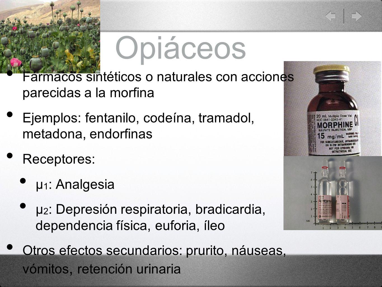 Opiáceos Fármacos sintéticos o naturales con acciones parecidas a la morfina Ejemplos: fentanilo, codeína, tramadol, metadona, endorfinas Receptores: