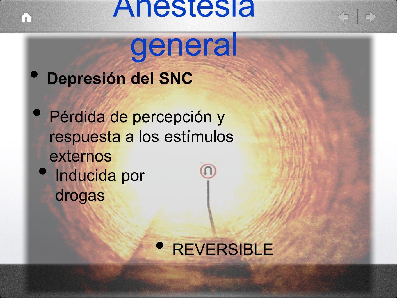 Anestesia general Depresión del SNC REVERSIBLE Inducida por drogas Pérdida de percepción y respuesta a los estímulos externos