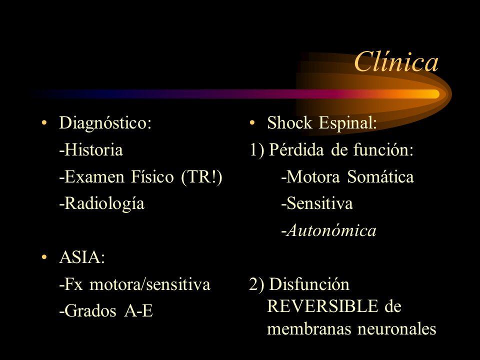 Clínica Diagnóstico: -Historia -Examen Físico (TR!) -Radiología ASIA: -Fx motora/sensitiva -Grados A-E Shock Espinal: 1) Pérdida de función: -Motora S