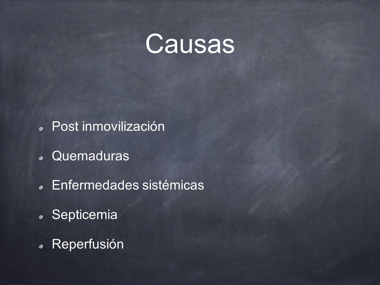 Causas Post inmovilización Quemaduras Enfermedades sistémicas Septicemia Reperfusión