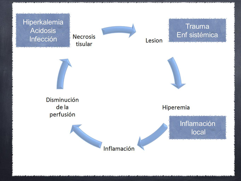 Trauma Enf sistémica Inflamación local Hiperkalemia Acidosis Infección
