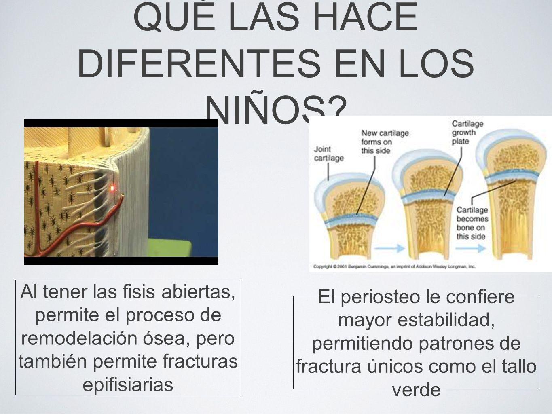 TRATAMIENTO Irrigación Desbridamiento amplio Estabilización de la fractura (temporal o definitiva) Cobertura del defecto cutáneo Antibioticoterapia Manejo de las secuelas
