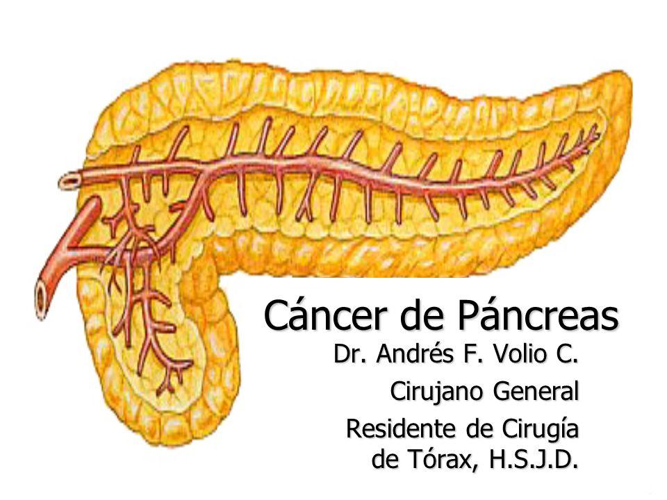 Cáncer de Páncreas Dr. Andrés F. Volio C. Cirujano General Residente de Cirugía de Tórax, H.S.J.D.