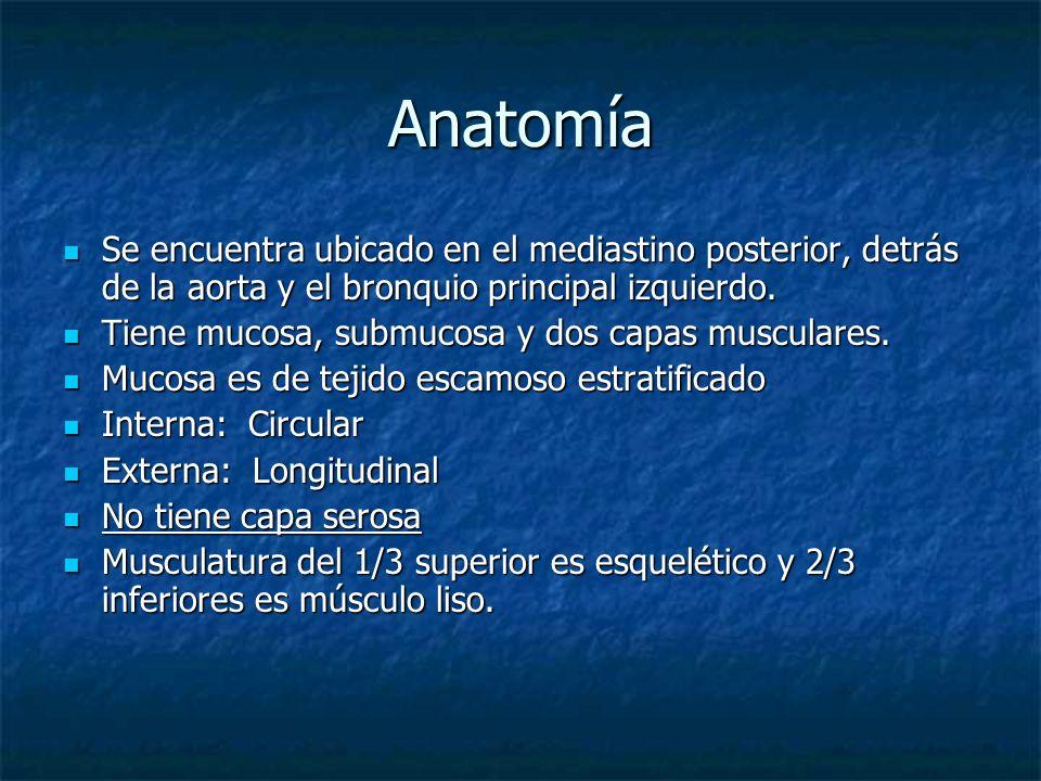 Síntomas Disfagia (60% circunferencia) Disfagia (60% circunferencia) Pérdida de Peso Pérdida de Peso Estridor Estridor Tos Tos Ahogamiento Ahogamiento Broncoaspiración Broncoaspiración Neumonía a repetición Neumonía a repetición Hemorragia grave Hemorragia grave Parálisis de cuerdas vocales Parálisis de cuerdas vocales Dolor óseo Dolor óseo