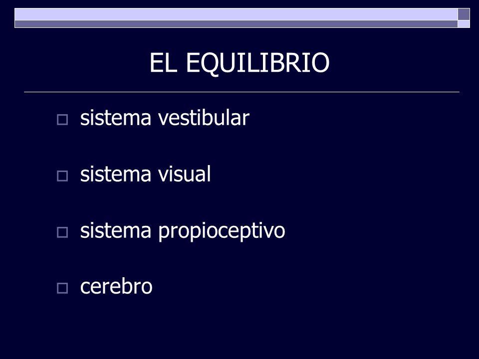 EL EQUILIBRIO sistema vestibular sistema visual sistema propioceptivo cerebro