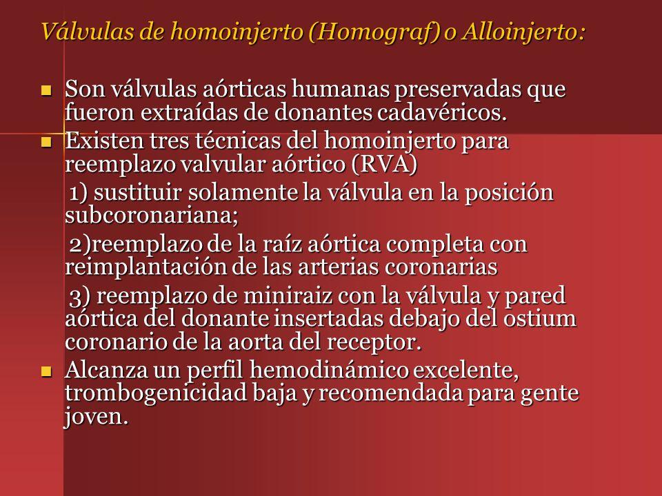 Válvulas de homoinjerto (Homograf) o Alloinjerto: Son válvulas aórticas humanas preservadas que fueron extraídas de donantes cadavéricos. Son válvulas