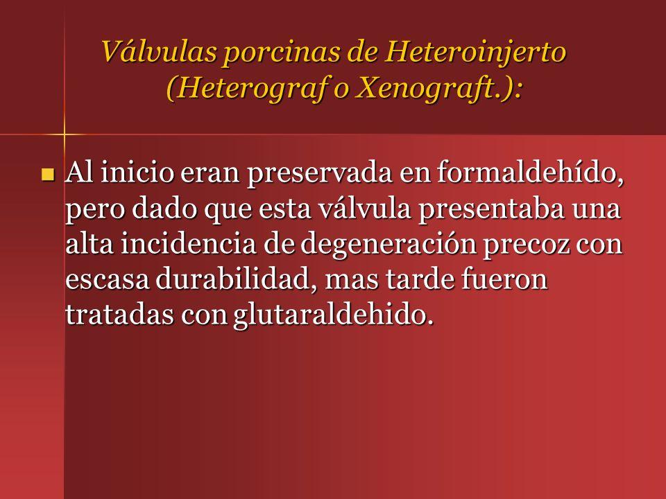 Válvulas porcinas de Heteroinjerto (Heterograf o Xenograft.): Al inicio eran preservada en formaldehído, pero dado que esta válvula presentaba una alt
