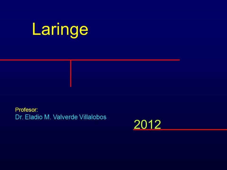 Exploración Laringoscopía indirecta por espejo LARINGE