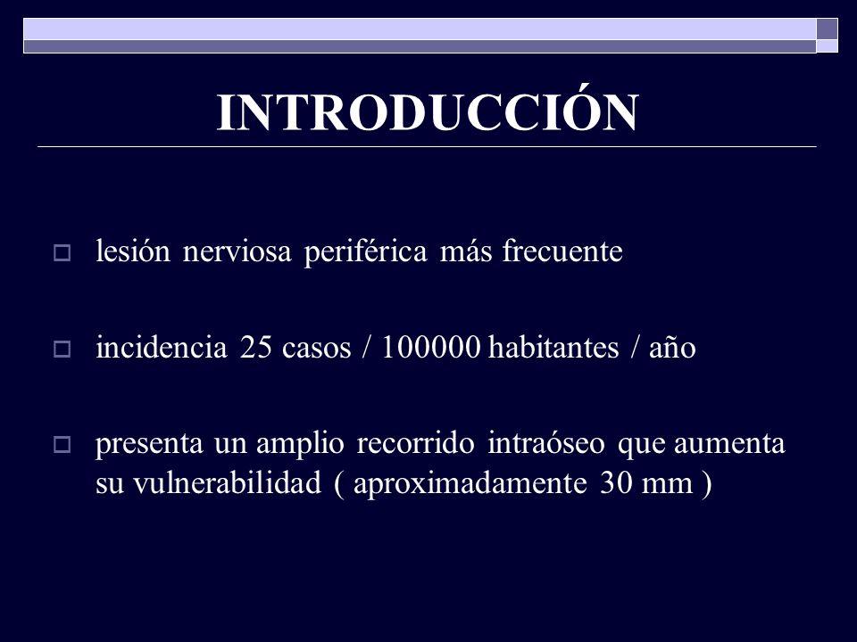 Patología del conducto auditivo externo forúnculo del conducto auditivo externo otitis externa difusa otitis externa maligna micosis eczema del conducto Psoriasis y dermatitis seborreica cuerpo extraño taco de cera
