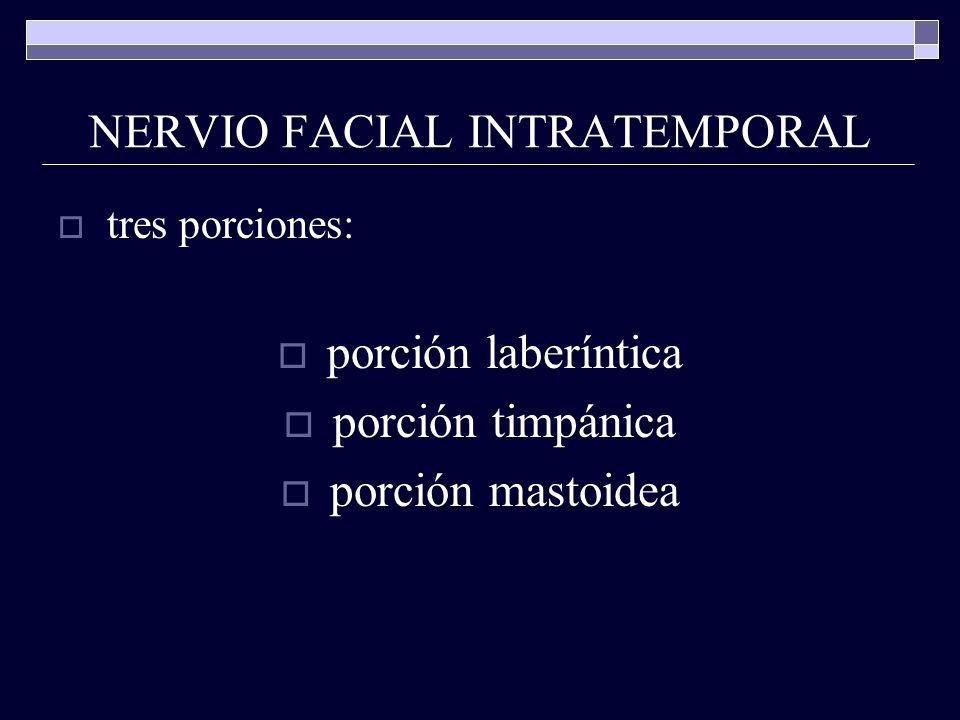 NERVIO FACIAL INTRATEMPORAL