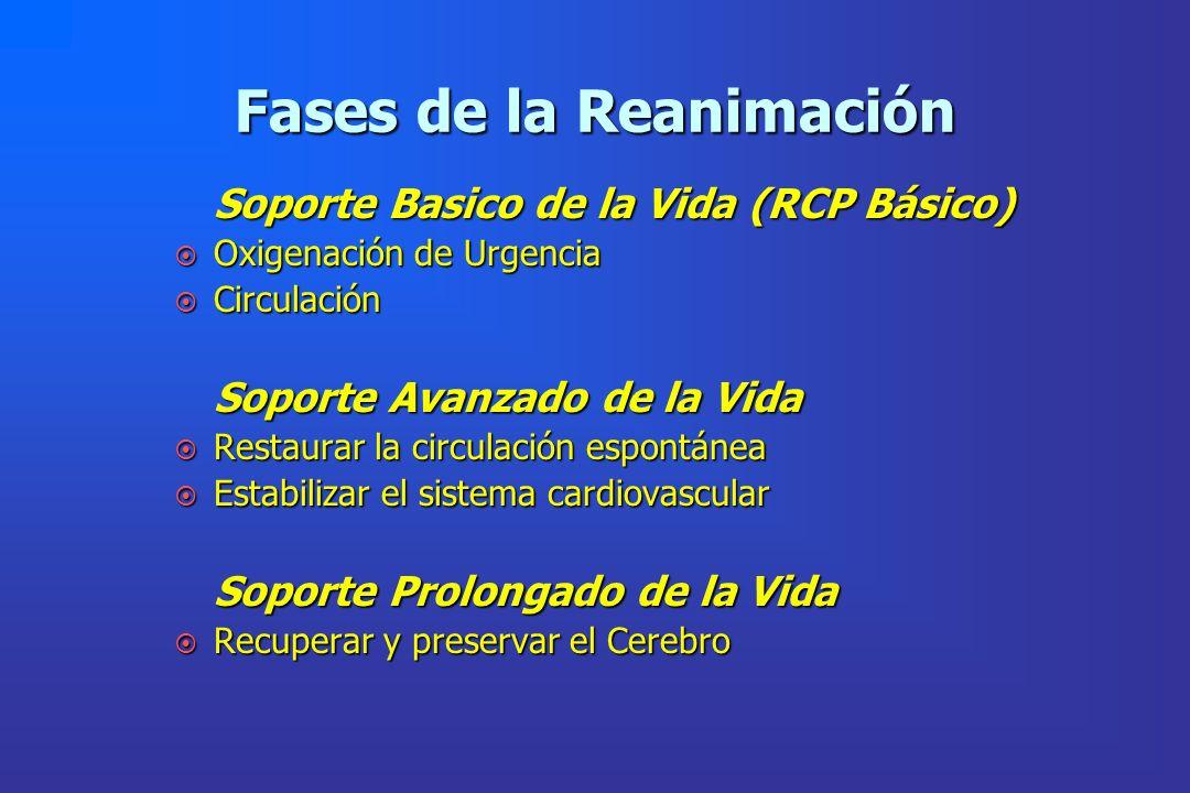 Fases de la Reanimación Soporte Basico de la Vida (RCP Básico) ¤ Oxigenación de Urgencia ¤ Circulación Soporte Avanzado de la Vida ¤ Restaurar la circ