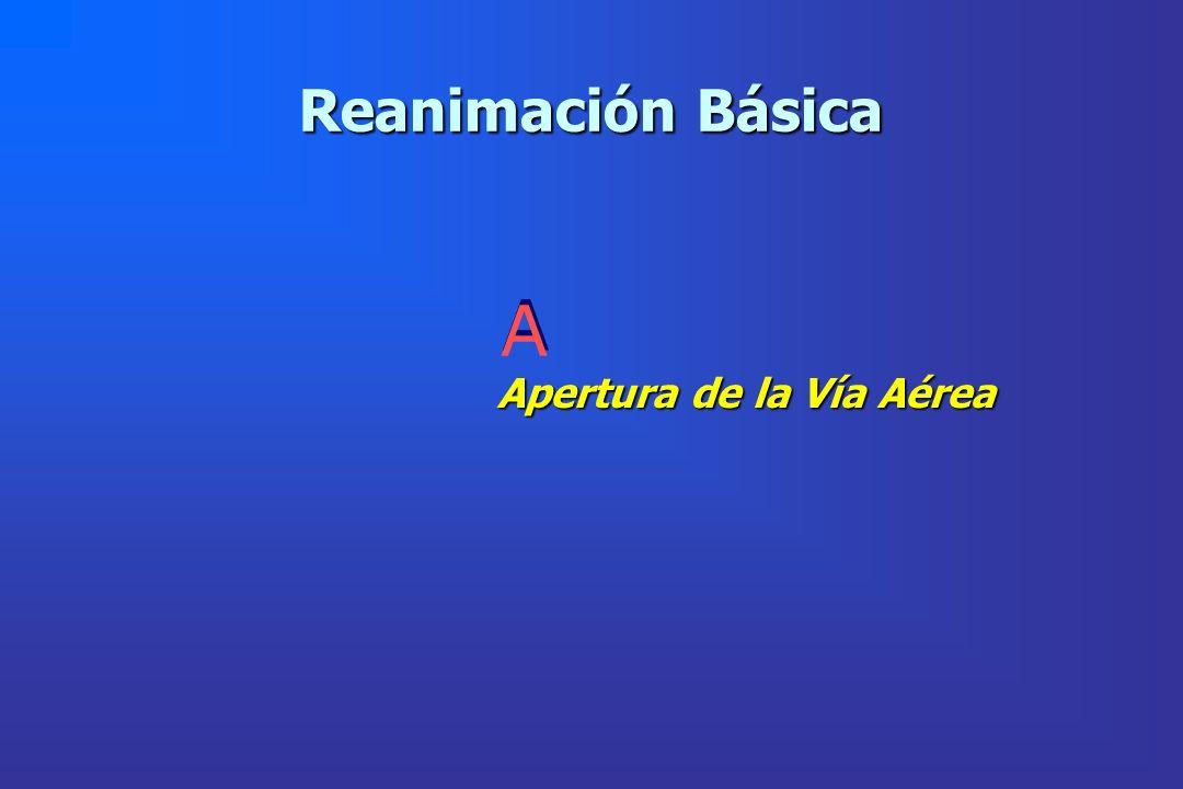 Reanimación Básica Apertura de la Vía Aérea A A