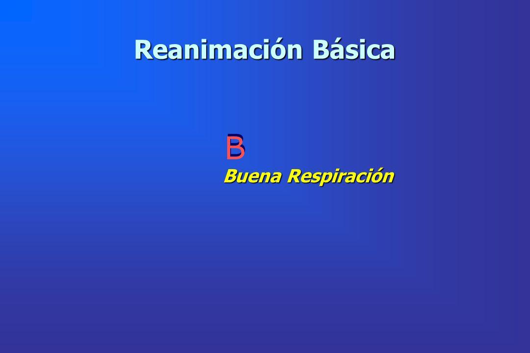Reanimación Básica B B Buena Respiración