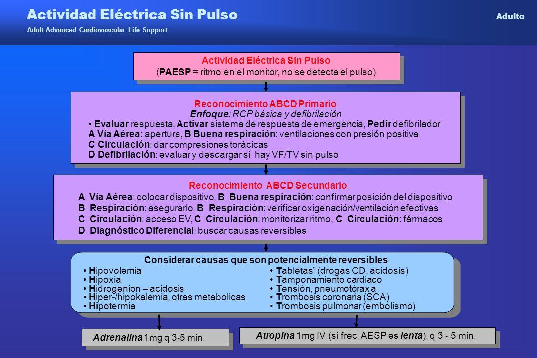 Actividad Eléctrica Sin Pulso Adulto Adult Advanced Cardiovascular Life Support Reconocimiento ABCD Primario Enfoque: RCP básica y defibrilación Evalu