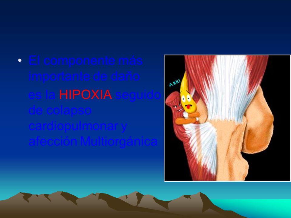 Complicaciones tardias Complicaciones tardias SDRA Encefalopatía hipóxico isquémico Neumonía aspirativa Absceso pulmonar Neumotórax Insuficiencia renal Sepsis Coagulopatía Barotrauma Empiema Mioglobinuria Hemoglobinuria Empiema