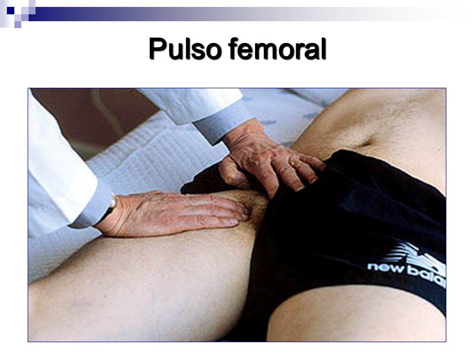 Pulso carotideo