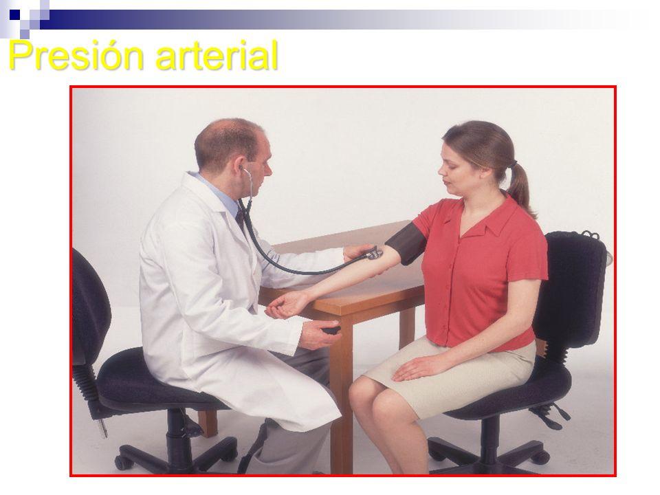 NOCIONES BÁSICAS DE ANATOMÍA El esqueleto El esqueleto Sistema Circulatorio Sistema Circulatorio Sistema Respiratorio Sistema Respiratorio Sistema Nervioso Sistema Nervioso Sistema Digestivo Sistema Digestivo Sistema Urinario Sistema Urinario